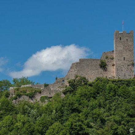 Schloss Ruine Waldenburg